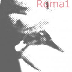 """ROMA- """"Il Cortile"""" Consultorio di Psicoanalisi Applicata"""
